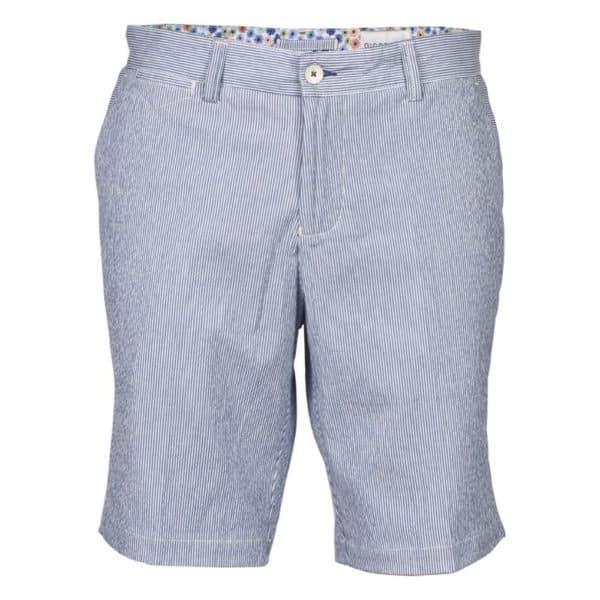Giordano Regular Fit Blue striped Shorts