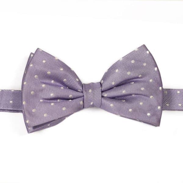 Purple polka dot bow tie warwicks1