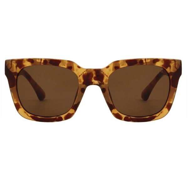 WARWICKS Brown Transparent Sunglasses F
