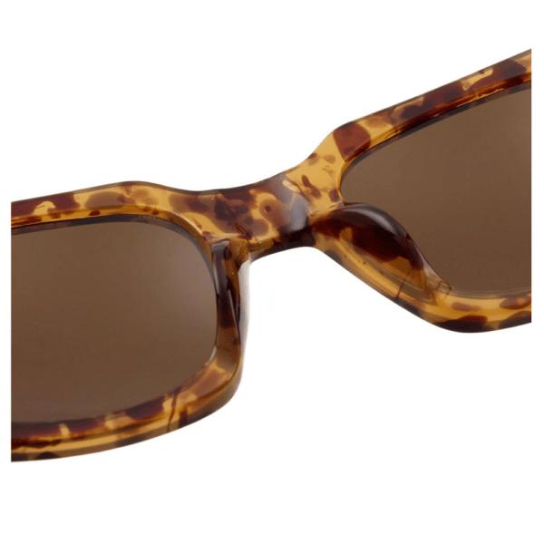 WARWICKS Brown Transparent Sunglasses I