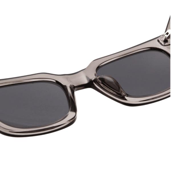 WARWICKS Grey Transparent Sunglasses I