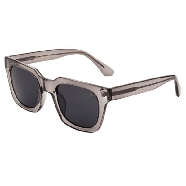 WARWICKS Grey Transparent Sunglasses S